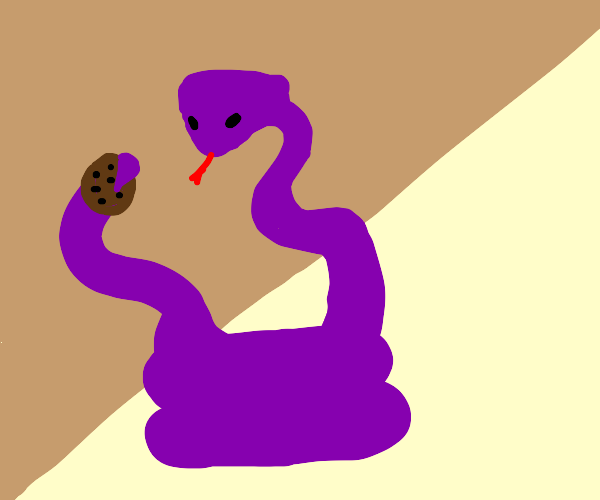 Cobra eating a Cookie