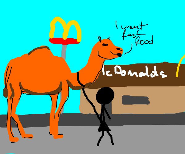 Woman's camel just wants some fast food