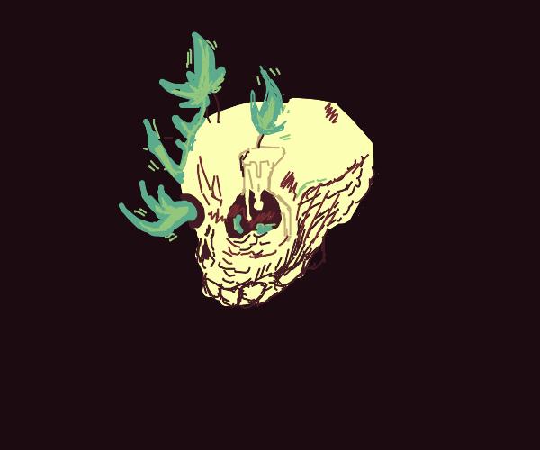 Candle Skeleton
