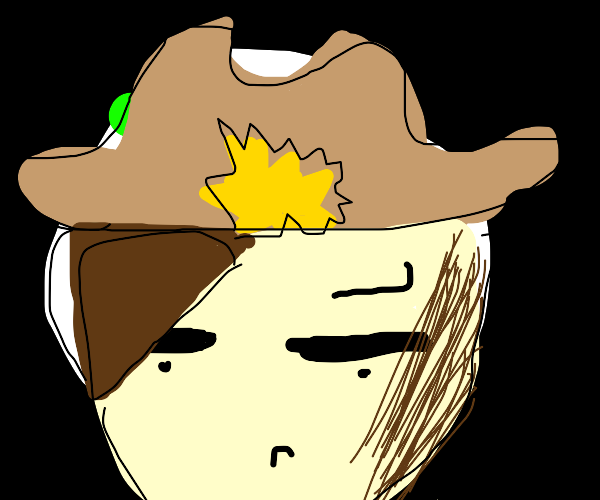 Gamer Cowboy