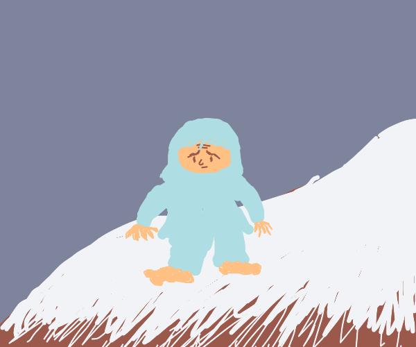 Yeti on the mountain (he looks kinda sad)