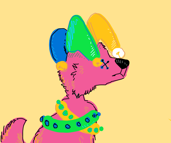 Jester dog with eye stitched together