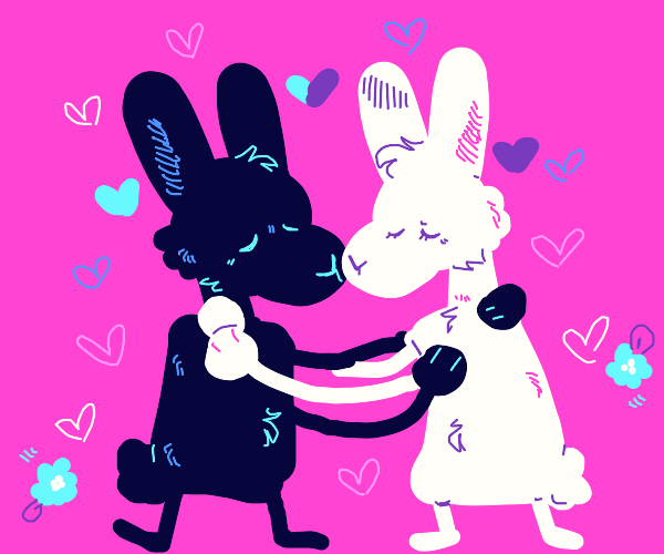 Black and white rabbits hugging each other