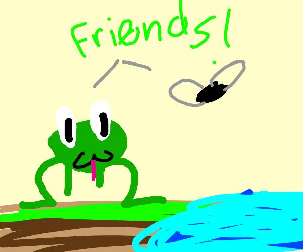 frog befriends a fly