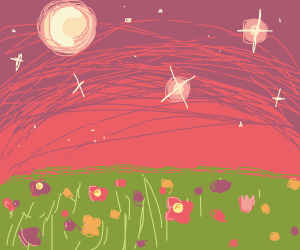 Midnight sky with a field of flowers
