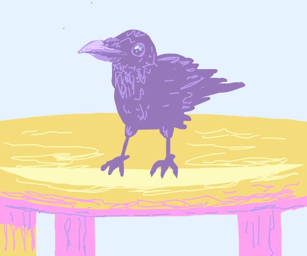 A crow on a table