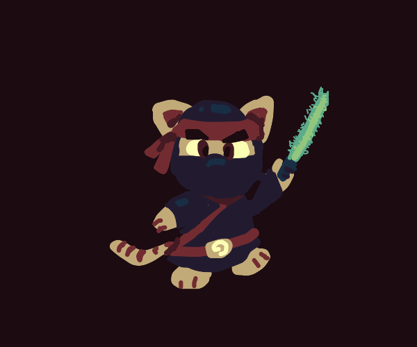 ninja cat with a lightsaber