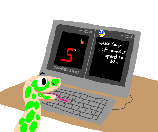 A Python coding in python the snake game