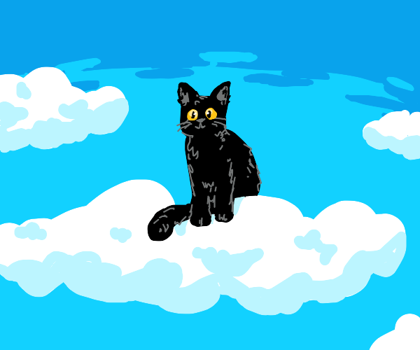 black cat with yellow eyes sitting on a cloud