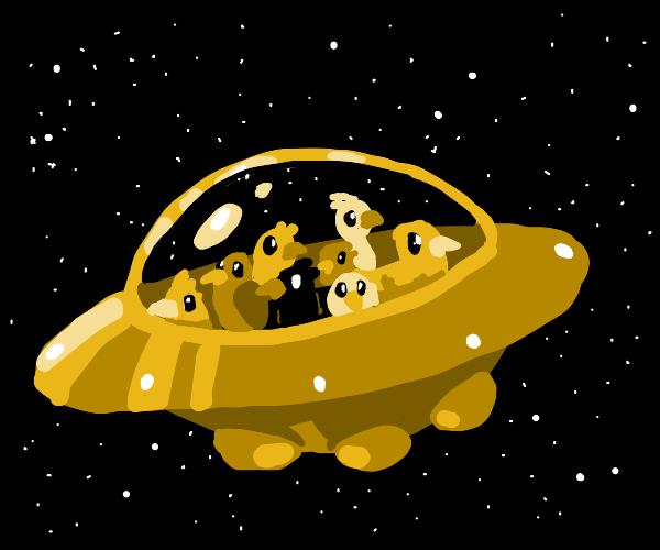 UFO full of birds