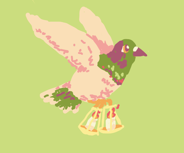 Carrier pigeon carries candles