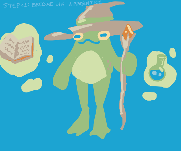 Step 11: Duel the wizard frog