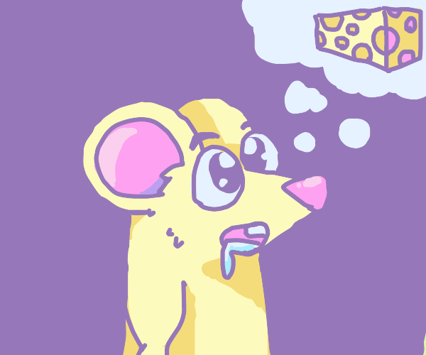 mouse salivates over cheese.