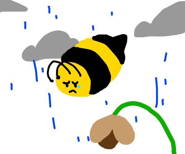 depressed bee (does he need a hug?)