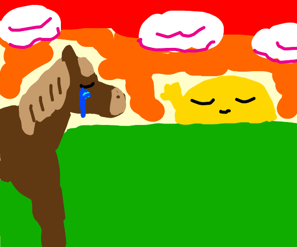 horse crying at a sunset