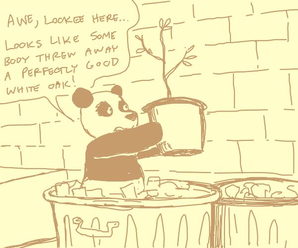 Trash Panda & Baby Tree