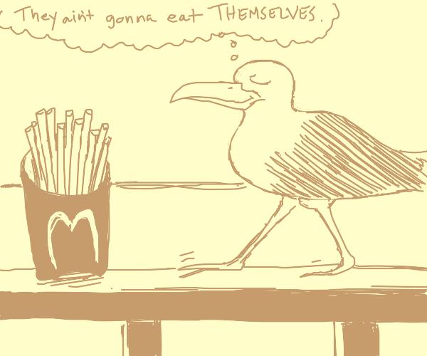 Seagull struts towards fries