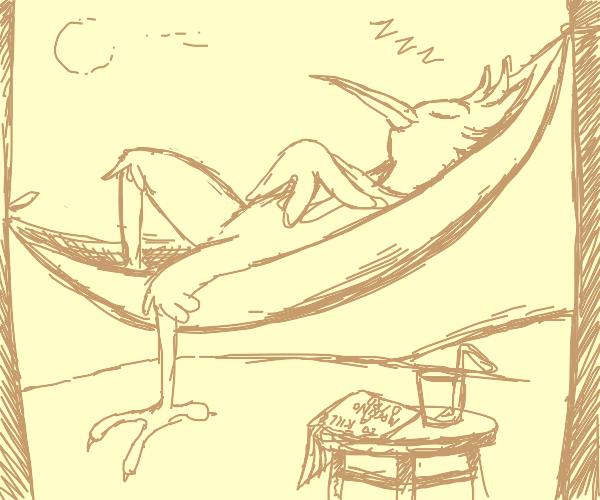 Bird sleeping in hammock