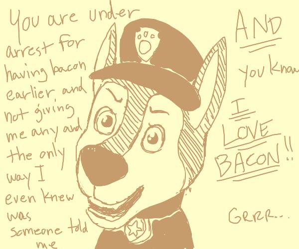 Paw patrol cop dog