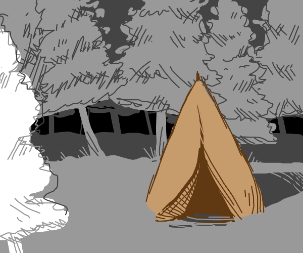 Teepee in a pine forest