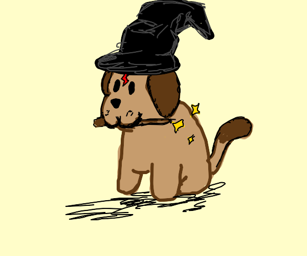 you're a wizard doggie