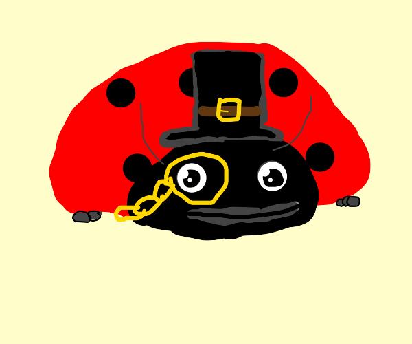 Important Ladybug