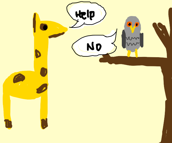 Giraffe asks owl for advice