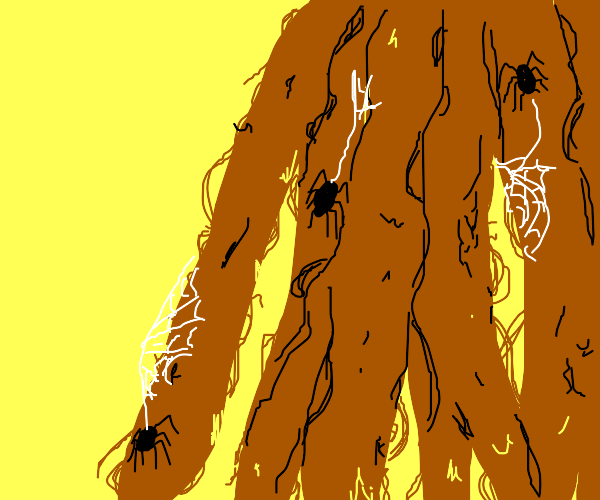 Spiders in your dreadlocks