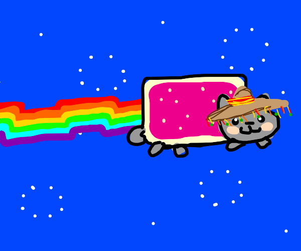 Nyan Cat has a mexican hat.