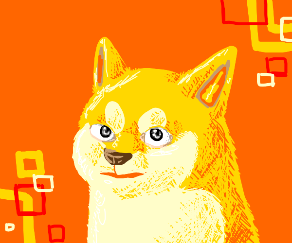 doge with human eyes