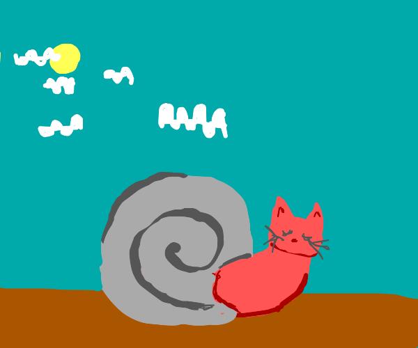 A cat snail