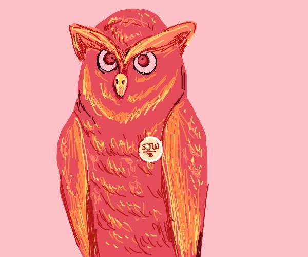 Social Justice Warrior Owl