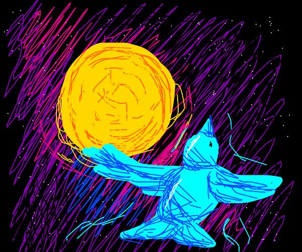 Cosmic bird flying towards the sun