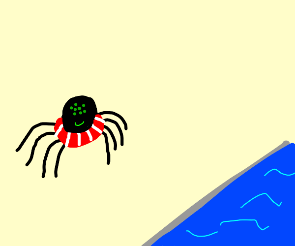 spider about to go swimming