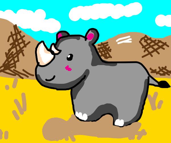 ill rhinoceros