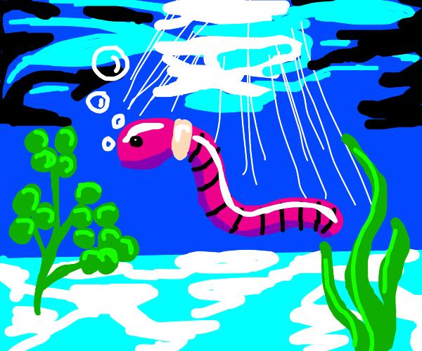 Worm underwater
