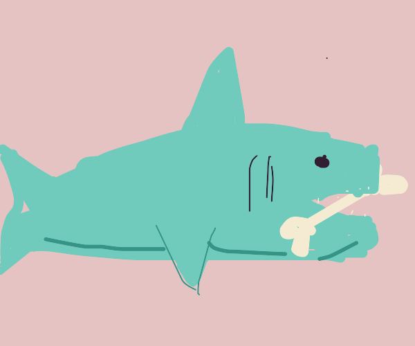shark with a bone in its mouth