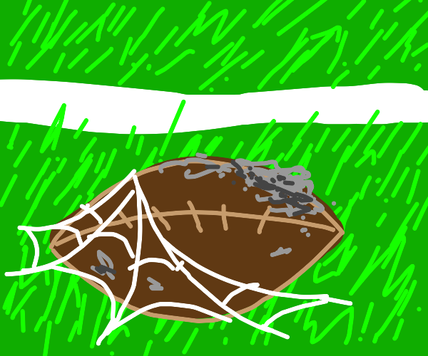 Football is forgotten in the field
