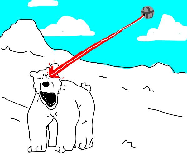 Laser being shot into polar bear's eye