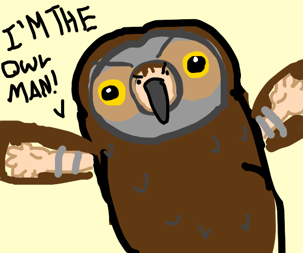 IM THE OWL MAN