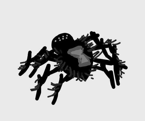 Spider with hourglass printed on its back