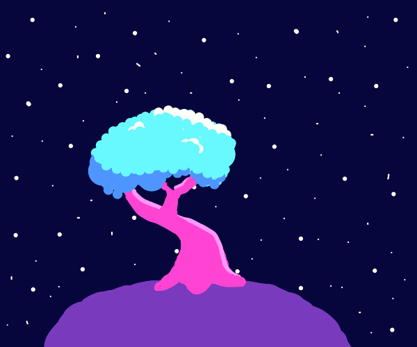 the space tree