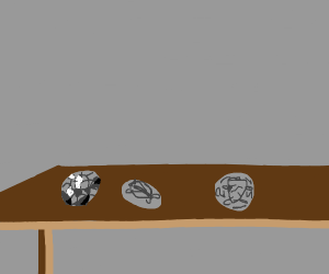 Table With Rocks Or Fossils