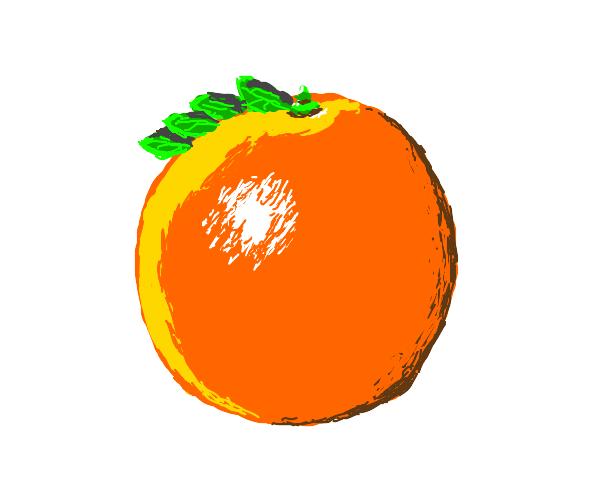 Orange with hair-like leaves