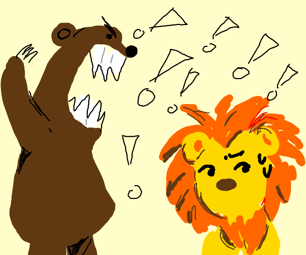 bear yelling at a lion