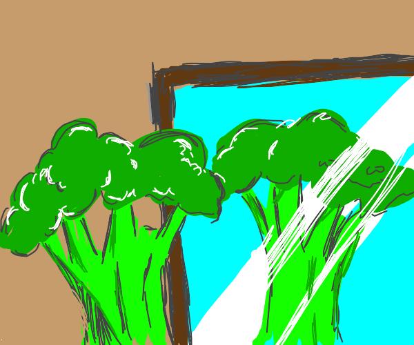 broccoli looks at himself through mirror