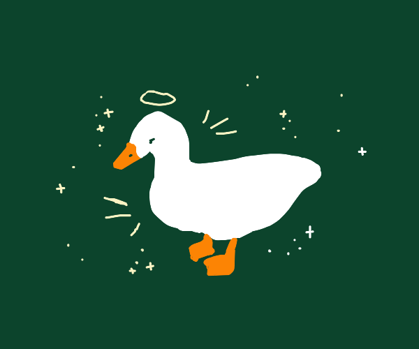 Angelical duck