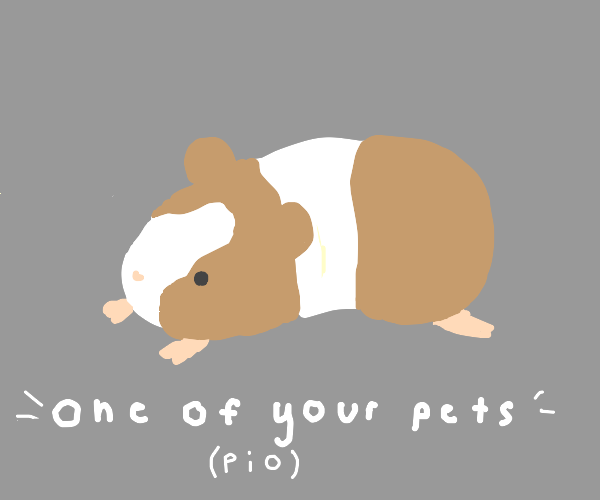 Draw one of your pets ( PIO )