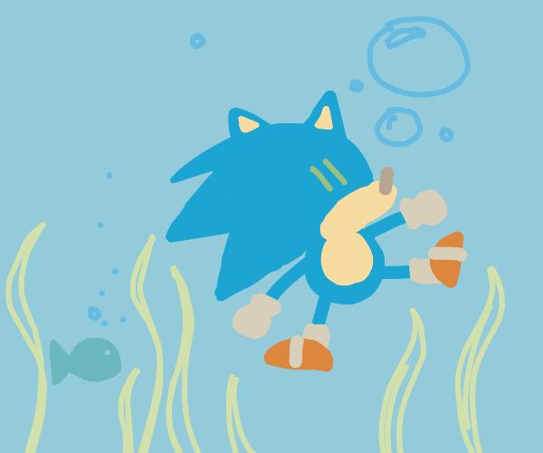 Underwater Sanic