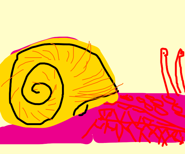 Pink snail with yellow shell